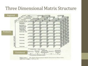 project report example matrix structure