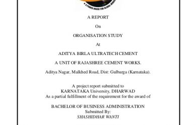 project report format aditya birla ultratech cement