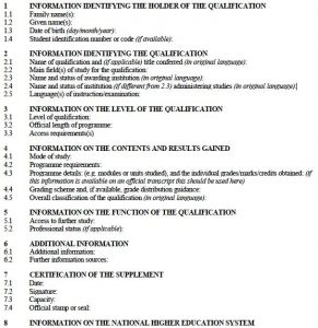 proper outline format programmeplan