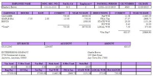 quickbooks pay stub template direct deposit pay stub