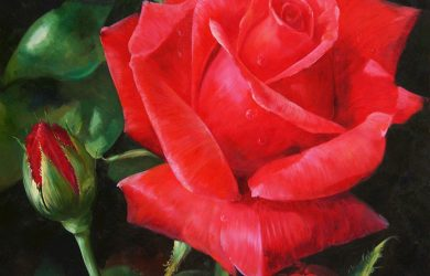 red flower painting red rose flower painting