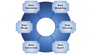 research report formats data tabulation services