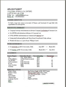resume formats free excellent resume sample format