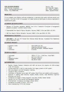 resume formats free professional resume formats ()
