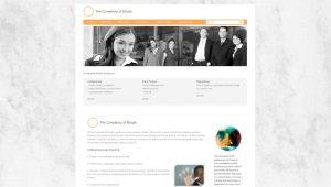 retail web site retail website design