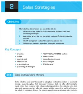sales strategy example sales strategies planning process