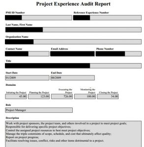 sample audit report pmp audit