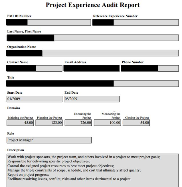 sample audit report