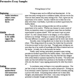 sample persuasive essay sample