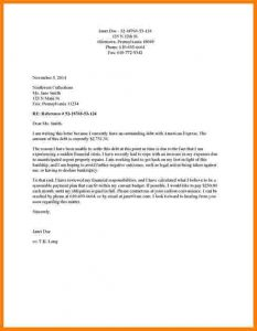 samples hardship letter character letter for child custody hardshipcollectionagency