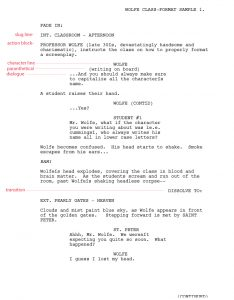 screenplay format template script format sa copy
