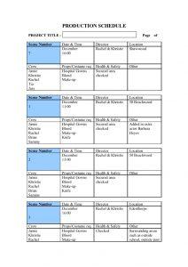 script format template pre production templates