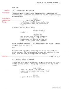 script writing template script format sa copy