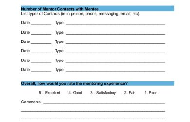 self evaluation sample introducing a volunteer mentoring program part i