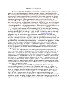self reflection essay reflection essay of the blog