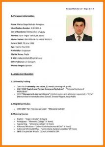 simple cover letter sample english cv examples cv in english example cv english version cb