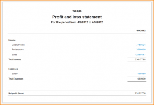 simple personal financial statement simple profit and loss statement profit and loss statement