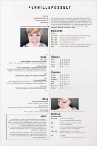 simple resume examples simple resume examples 2