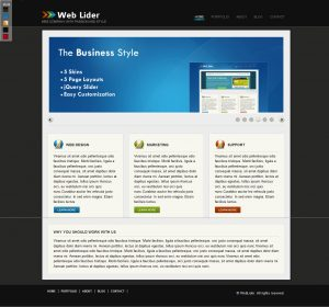 single page web templates weblider business wordpress theme