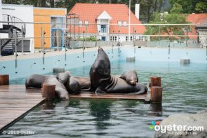 spa business planning norway bergen aquarium bergen v