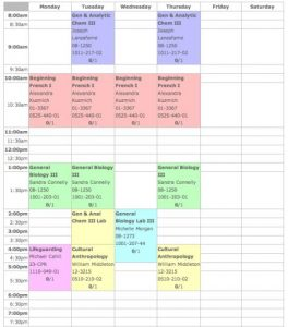 student schedule template screen shot at pm