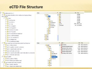 technical report formats ectd submissions
