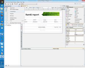 technical reports format jasper