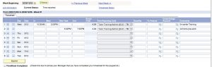 time sheets templates wponet trainee timesheet example