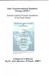 training manual examples sample iceberg process questions of the satir model