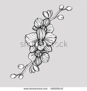 tropical flowers drawing stock vector hand drawn ink floral ornament with flowers orchid vector eps