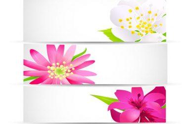 vertical banner design bright floral banner vector pack