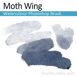 water brush photoshop moth wing watercolour photoshop brush