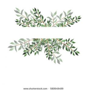 watercolor business card stock photo abstract green leaf border on white background design for wedding invitation or greeting card hand
