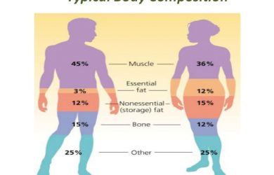 weight loss measurement chart body composition inbody