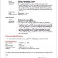 work order template word professional curriculum vitae resume sample ()