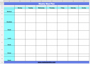 workout schedule template screen shot at pm